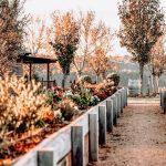 Lire la suite de Le cavurne, la sépulture cinéraire