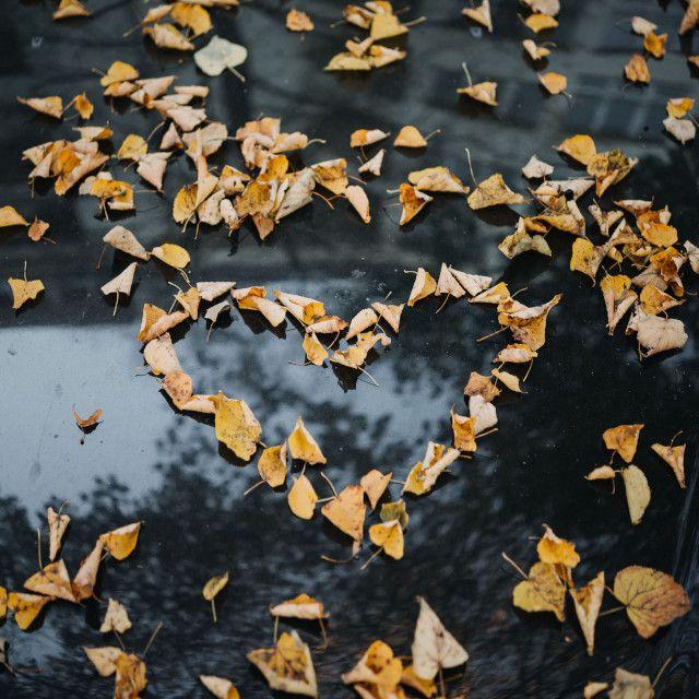 ROC ECLERC Home pompes funèbres coeur feuilles d'automne